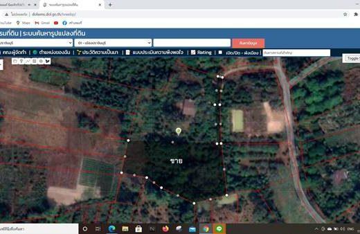 ขายที่ดินสวนผลไม้ เมืองปราจีนบุรี 3 ไร่ 1 งาน 86 ตารางวา เงียบสงบ บรรยากาศดี ร่มรื่นด้วยผลไม้