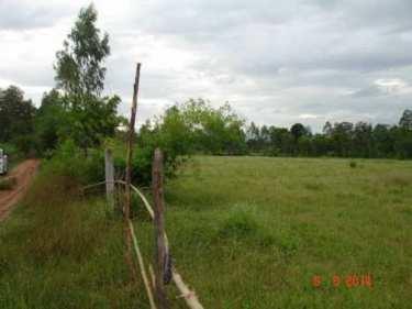 ขายที่ดิน ขอนแก่น สำหรับทำการเกษตร มีโฉนด มีบ้านพักและสระเก็บน้ำ โทร 0935398262
